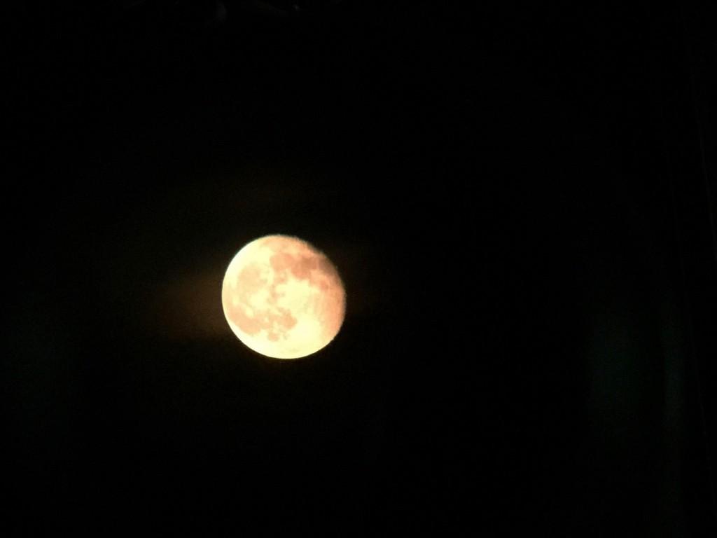 東の空に昇りはじめた月。 肉眼では輝き始める前の白っぽさの残る月でしたが、写真だとこんな風に。 2015年8月筆者撮影(iPhone6 plus使用)
