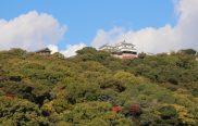 matsuyama-dwelling02