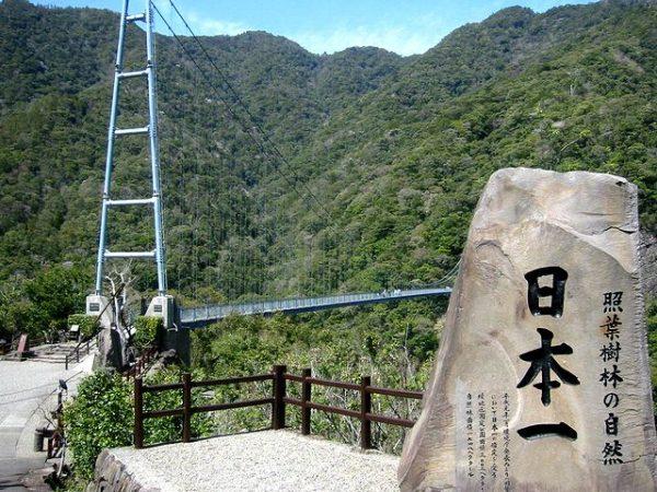 照葉(てるは)大吊橋