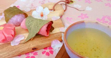 お花見に桜の和菓子を手作りしよう