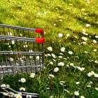 食費と時間と心にゆとりを!目的別、おすすめネットスーパー