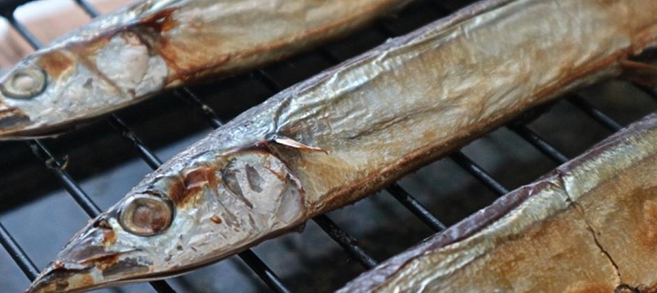 焼き魚を楽しもう