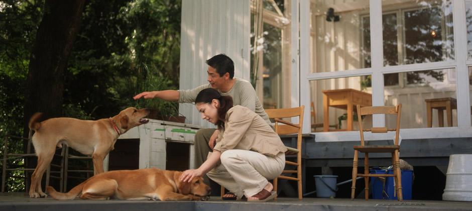 一軒家で愛犬と暮らす