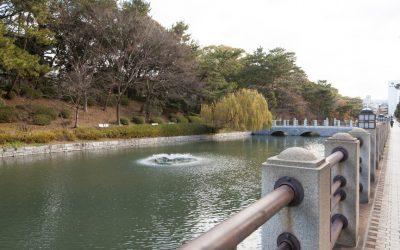 城山公園(松山市)