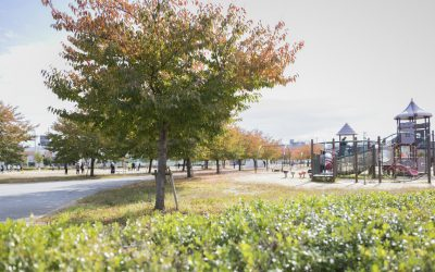 木太中央公園