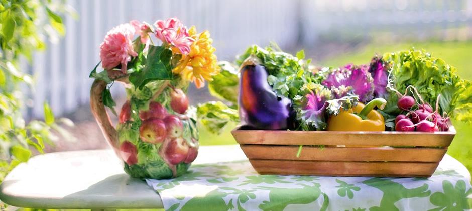 園芸店などでバルコニーの日当たりや状態などを相談してみましょう!
