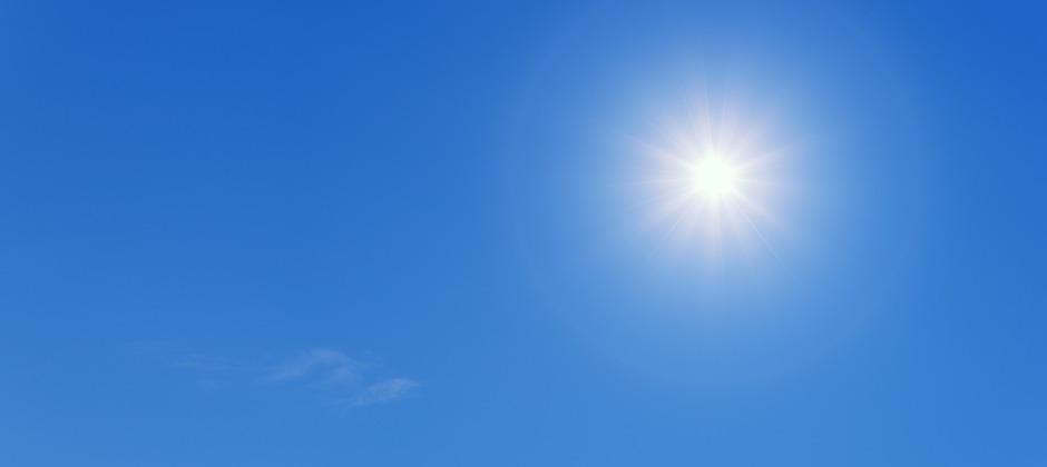 畳干しは年2回がベスト。日光消毒と徹底除湿でダニ・カビ防止