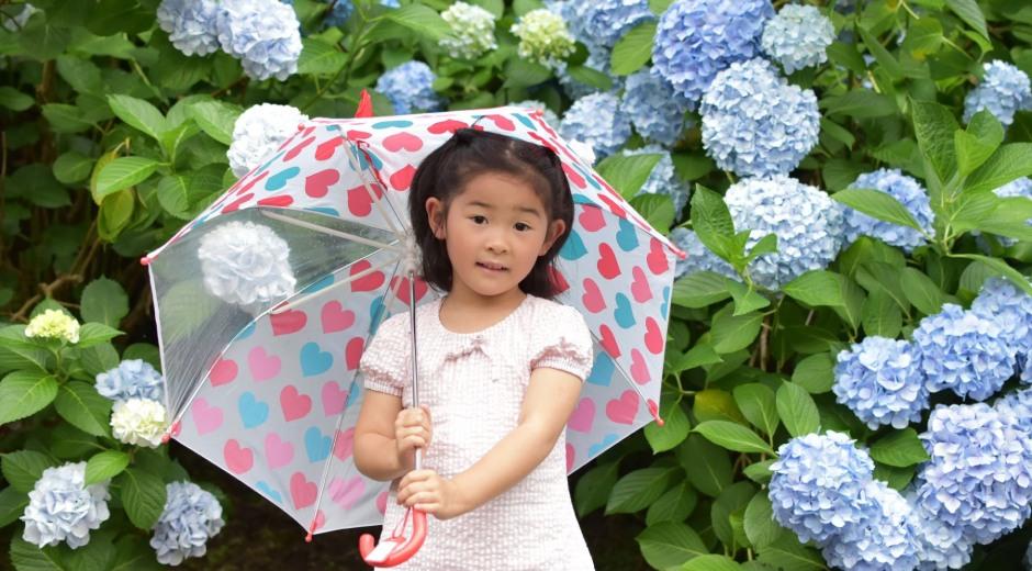 子ども用傘選び方3