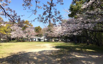 梅が台にある公園