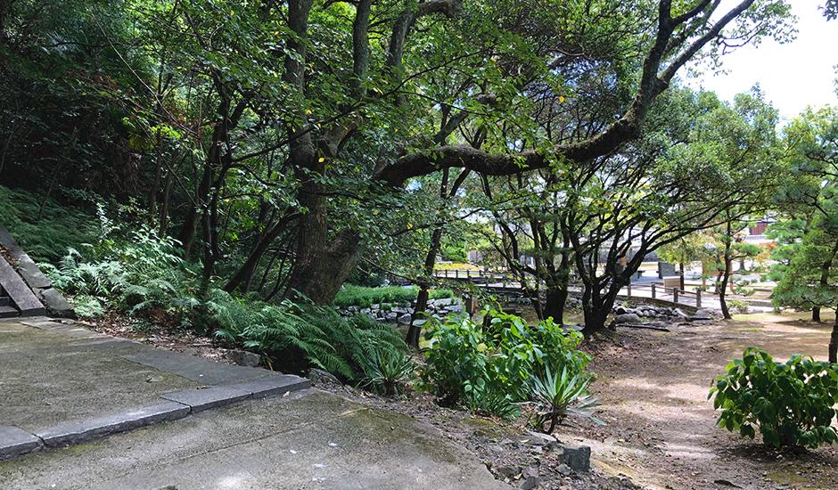 石段への道