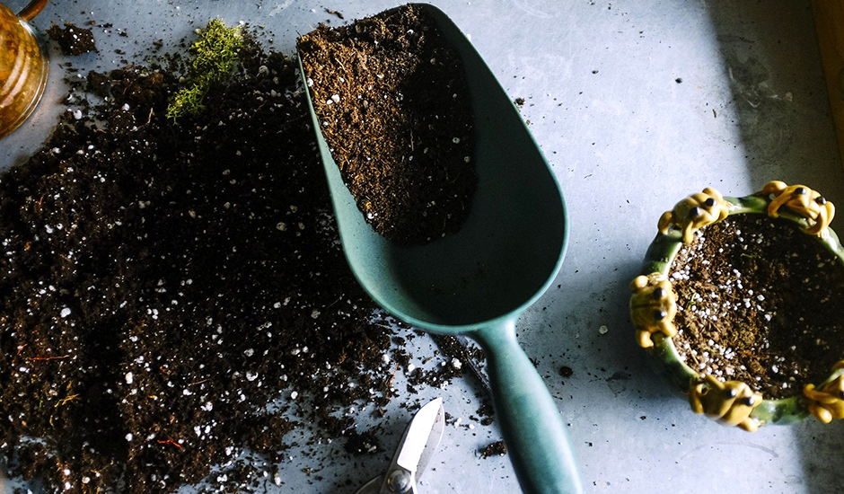 土の処理は自治体のルールを確認